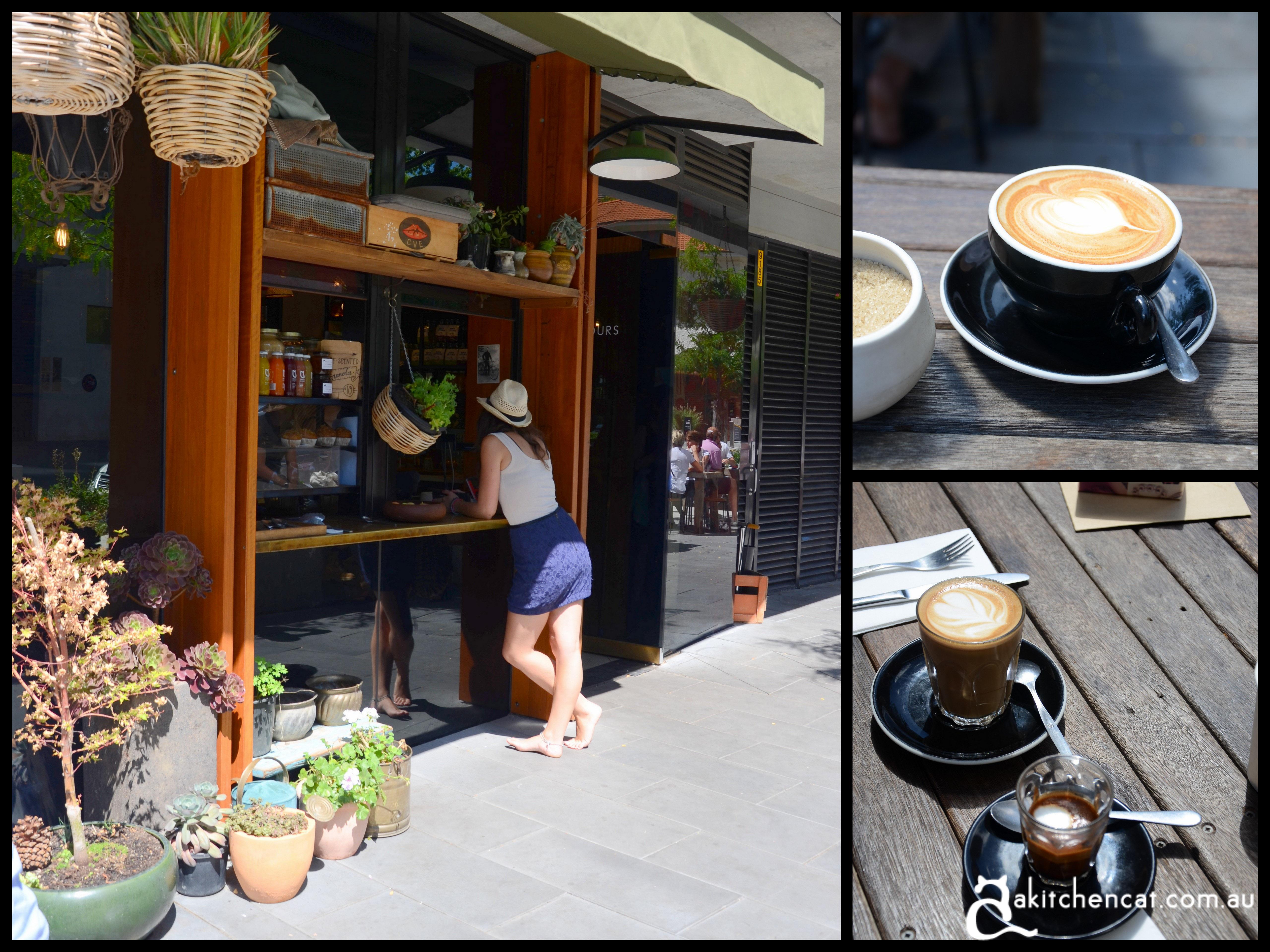 mocan coffee